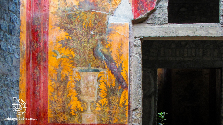 Villa Poppea, Oplontis, Torre Annunziata, Nero, Pompeii, Herculaneum, Vesuvius, guided tour to Pompeii, Oplontis guided tours, Ischia, Campania, Roman ruins, Nero's wife, Naples, Vesuvius eruption 79 a.D., Ischia tours, from Ischia to Pompeii