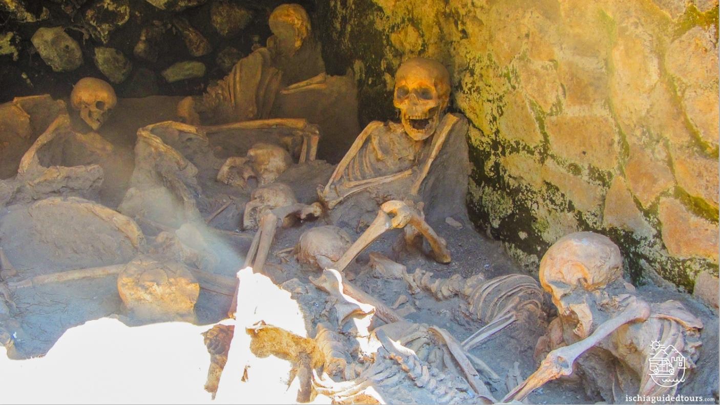 Herculaneum, Heruclaneum skeletons, Herculaneum boathouse skeletons, skeletons of Herculaneum, Herculaneum excavations, Pompeii, Roman ruins, Mount Vesuvius, 79 A.D.,  Herculaneum house of Neptune and Amphitrite, Herculaneum, women's baths herculaneum, mosaic women's bath herculaneum, Pompeii, Herculaneum Naples, guided tours Herculaneum, Herculaneum tours, Ercolano, Ischia to Herculaneum, Mount Vesuvius eruption, 79 A.D., Amalfi coats tour, Ischia tour, private tours Pompeii