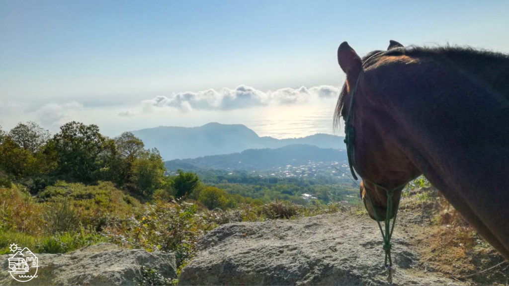 Horse riding in Ischia, horseback riding in Ischia, Ischia horse trek, Ischia horse tours, Horseback excursion in Ischia, Ischia stable, Ischia horsetrek, Ischia horse ride tour, Tour of Ischia, Ischia trekking, Ischia horse excursion