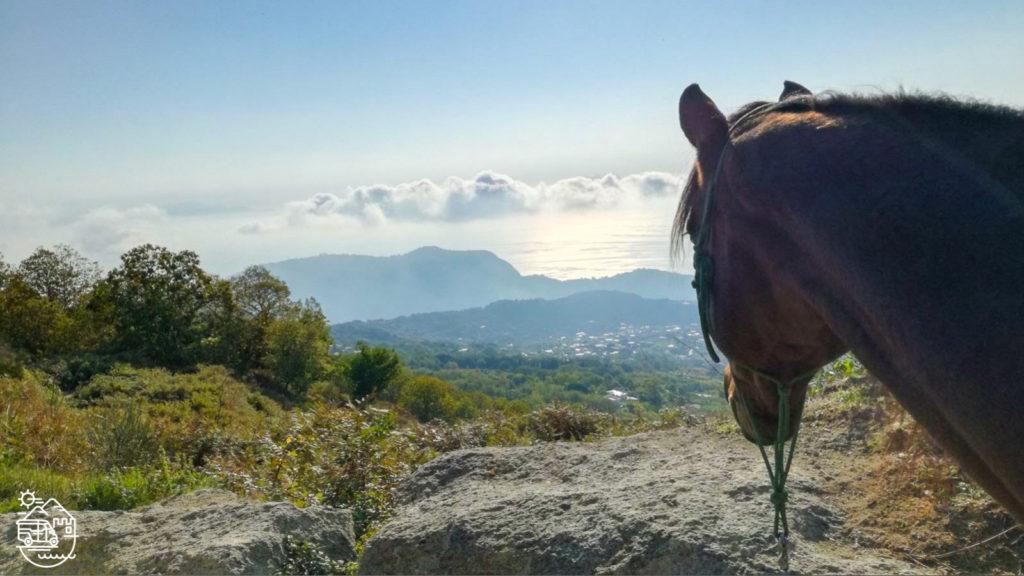 Horse riding in Ischia, horseback riding in Ischia, Ischia horse trek, Ischia horse tours, Horseback excursion in Ischia, Ischia stable, Ischia horsetrek, Ischia horse ride tour, Tour of Ischia, Ischia trekking, Ischia horse excursion